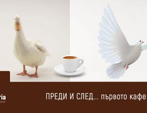 Някои хора са като птиците